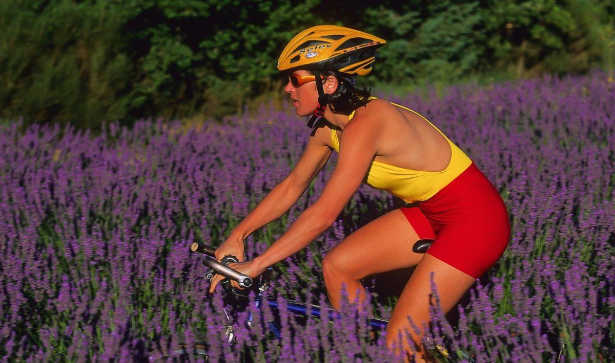 Comment choisir son vélo selon sa fonction ?